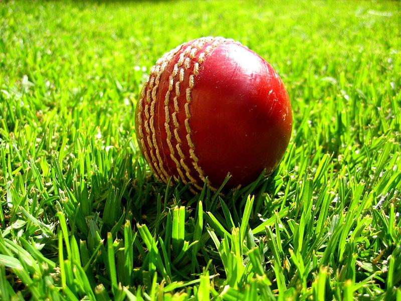 Cricket_ball_on_grass