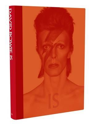 xdavid-bowie-is.jpg.pagespeed.ic.khJKXE71XR