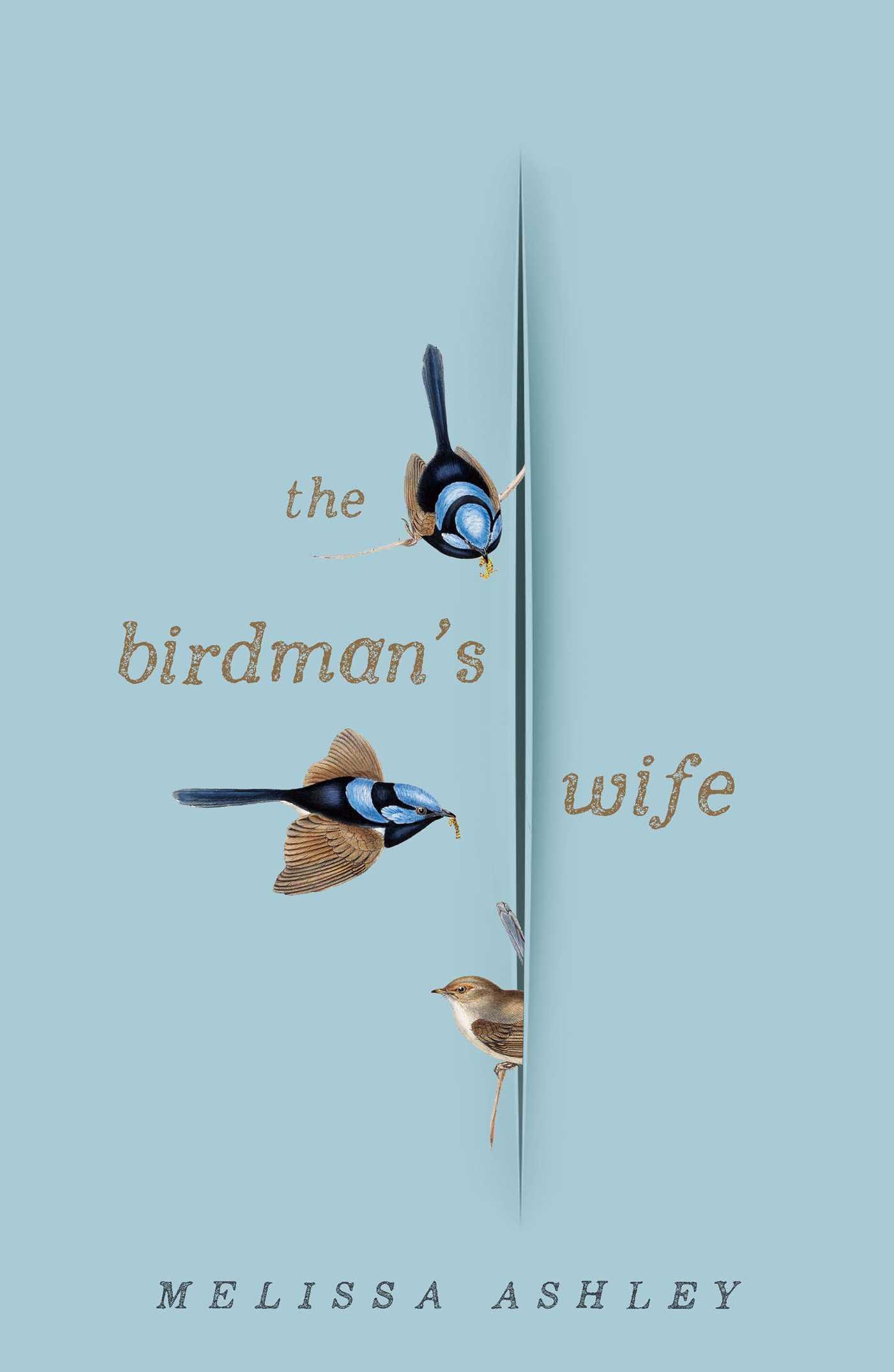 The Birdman's Wifeby Melissa Ashley