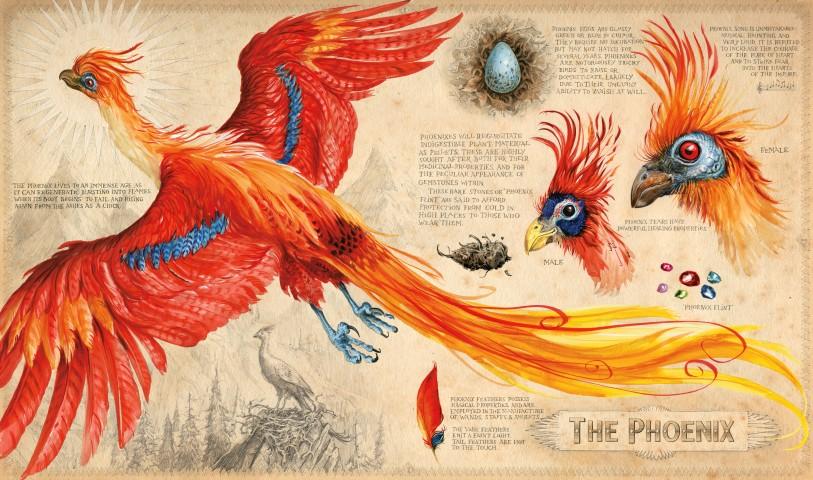 hp2_phoenix_layers-small