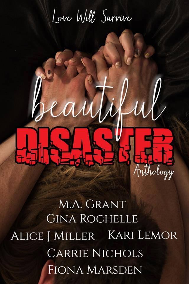 Beautiful Disaster Anthologyby Fiona Marsden