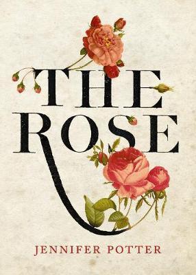 The Rose by Jennifer Potter.