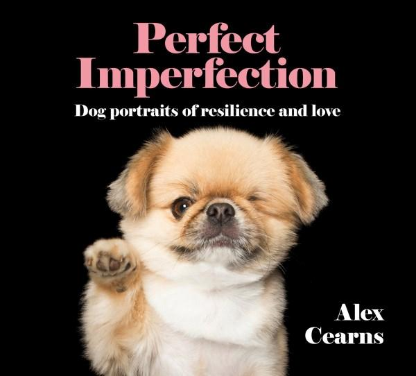 Perfect Imperfectionby Alex Cearns