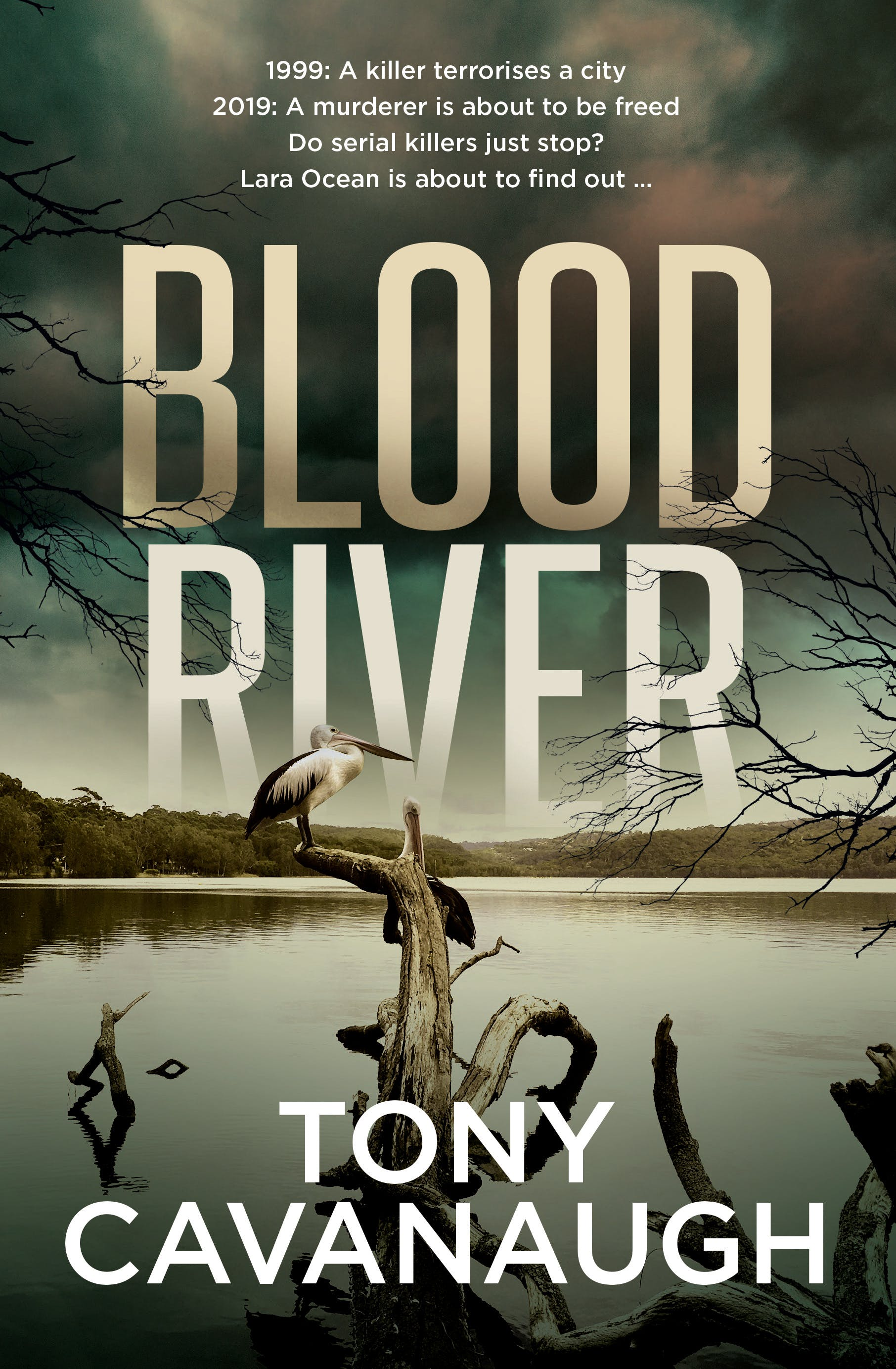 Blood Riverby Tony Cavanaugh