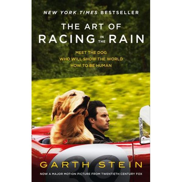 The Art of Racing in the Rain - Garth Stein   Karta-nauczyciela.org
