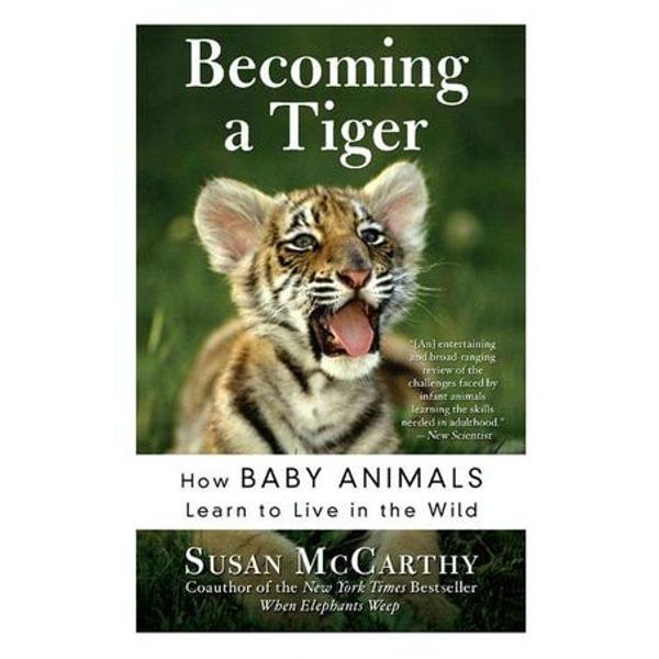 Becoming a Tiger - Susan McCarthy | Karta-nauczyciela.org
