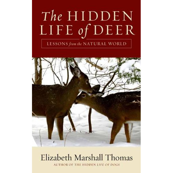 The Hidden Life of Deer - Elizabeth Marshall Thomas   Karta-nauczyciela.org