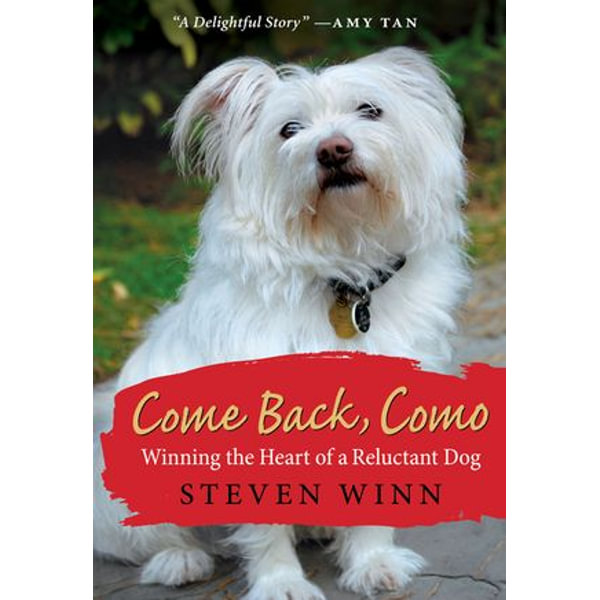 Come Back, Como - Steven Winn | Karta-nauczyciela.org
