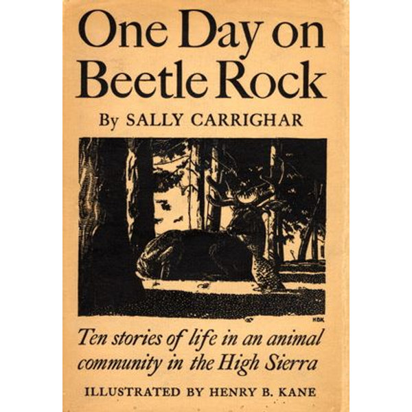 One Day On Beetle Rock - Sally Carrighar | 2020-eala-conference.org