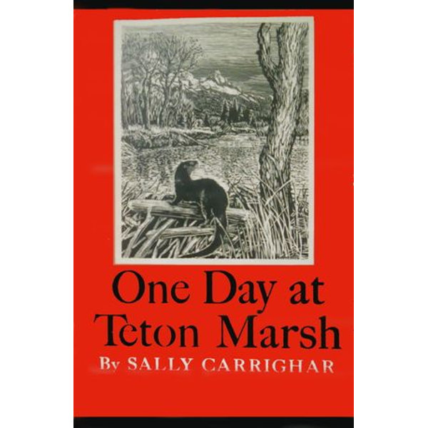 One Day At Teton Marsh - Sally Carrighar   Karta-nauczyciela.org