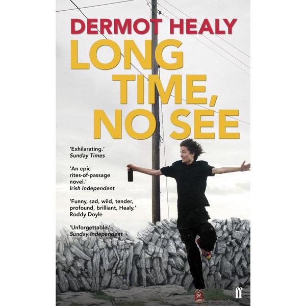 Long Time, No See - Dermot Healy   Karta-nauczyciela.org