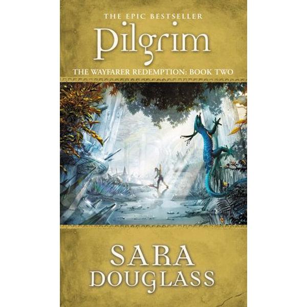 Pilgrim - Sara Douglass | Karta-nauczyciela.org