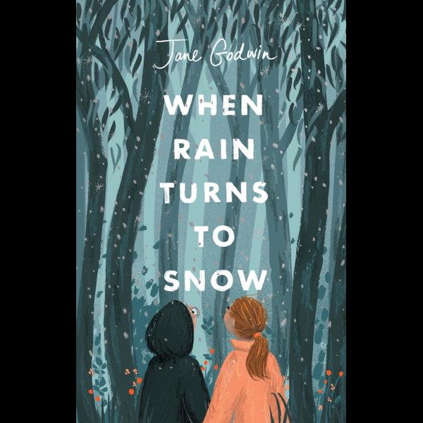When Rain Turns to Snow - Jane Godwin | 2020-eala-conference.org