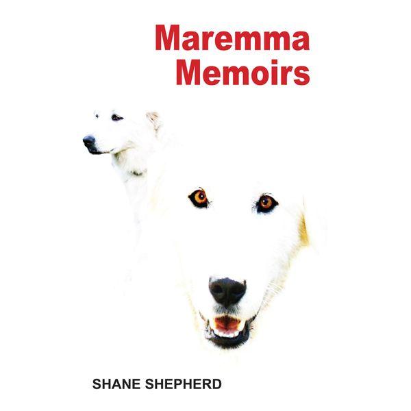 Maremma Memoirs - Shane Shepherd | Karta-nauczyciela.org