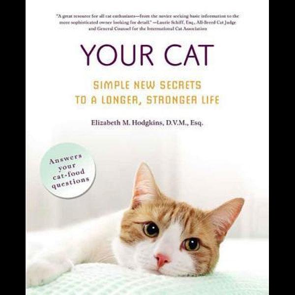 Your Cat -  | Karta-nauczyciela.org