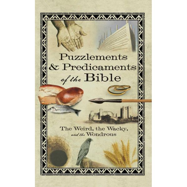 Puzzlements & Predicaments of the Bible - Howard Books | Karta-nauczyciela.org