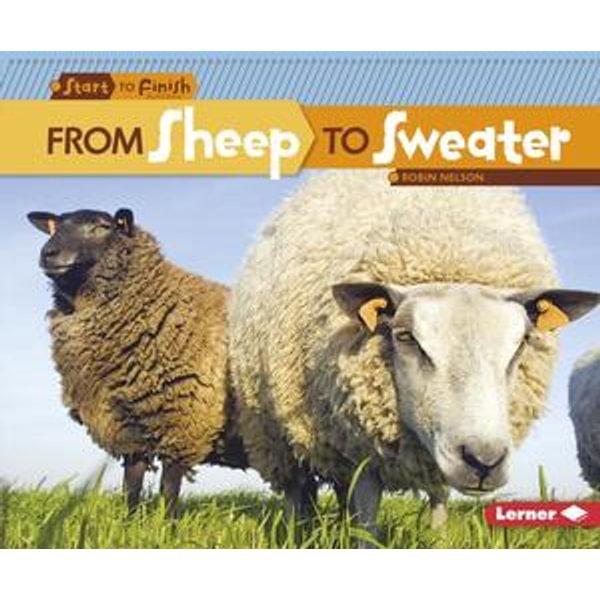 From Sheep to Sweater - Robin Nelson | Karta-nauczyciela.org