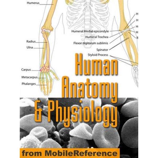 Human Anatomy And Physiology Study Guide (Mobi Medical) - MobileReference | Karta-nauczyciela.org