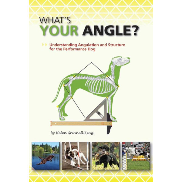 WHAT'S YOUR ANGLE? - Helen Grinnell King   2020-eala-conference.org