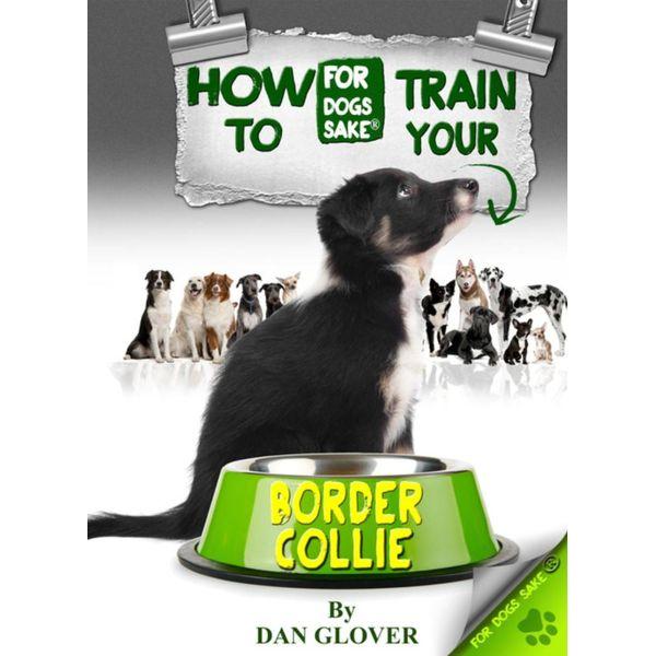 How to Train Your Border Collie - Caroline Smith | Karta-nauczyciela.org