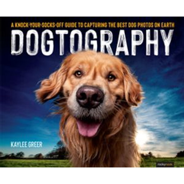 Dogtography - Kaylee Greer | Karta-nauczyciela.org