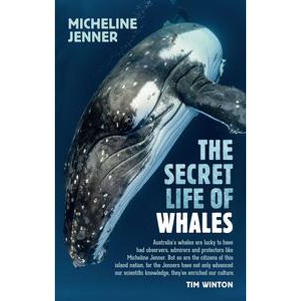 The Secret Life of Whales - Micheline Jenner | 2020-eala-conference.org