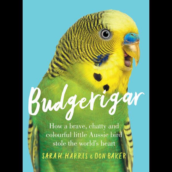 Budgerigar - Sarah Harris, Don Baker   Karta-nauczyciela.org